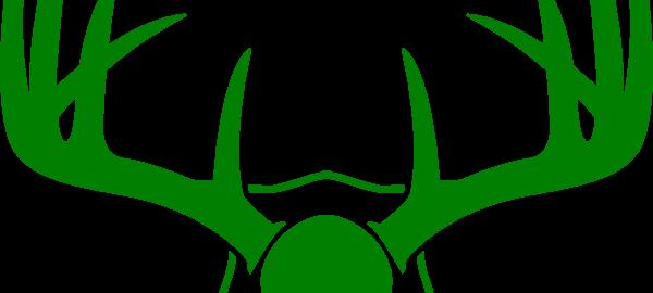 green-horns-hi